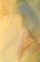 """YellowA 8x12"""", 8104707"""
