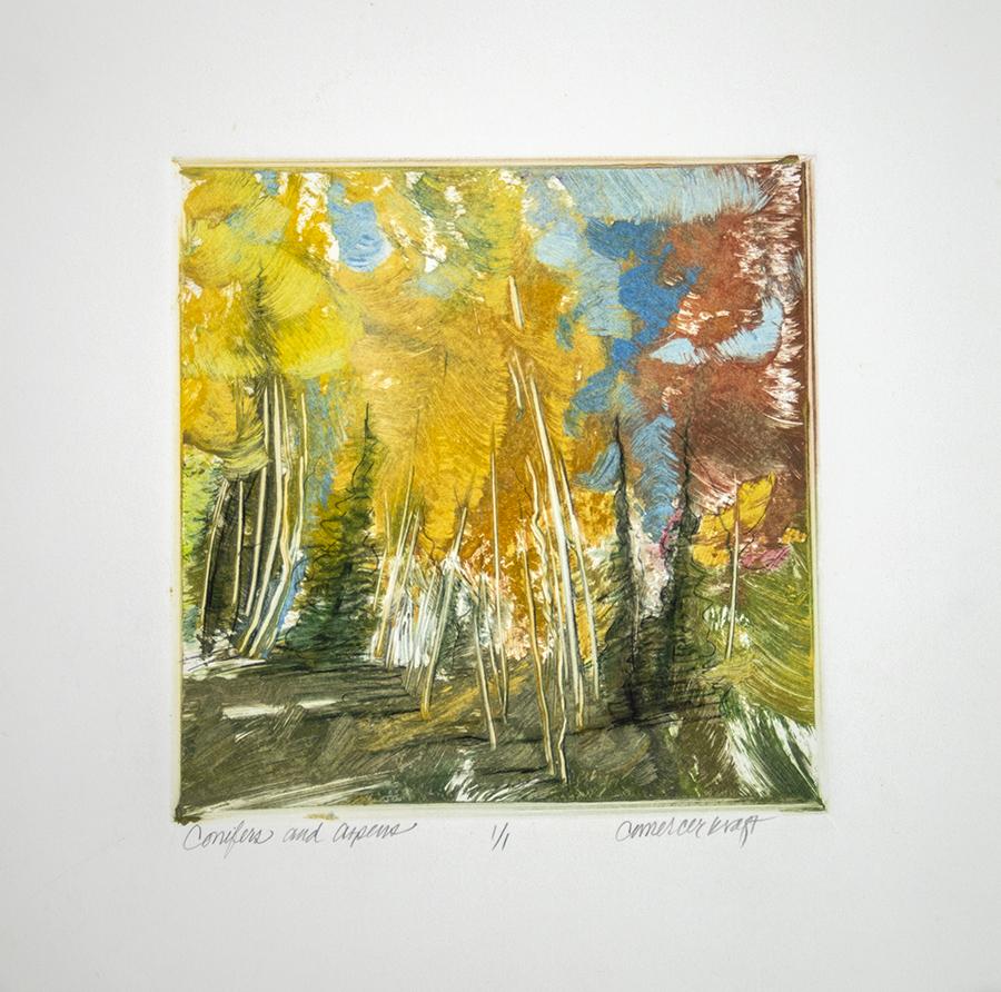 Conifers, Aspen, fall color, Colorado