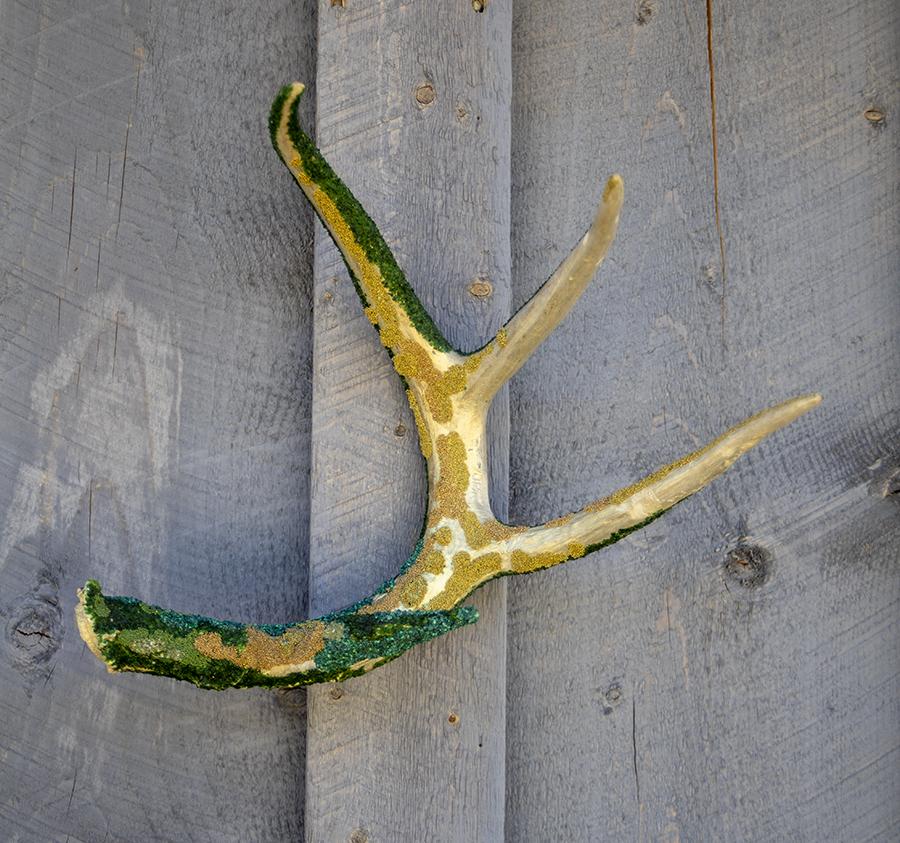 Antlers, decoration, interior design