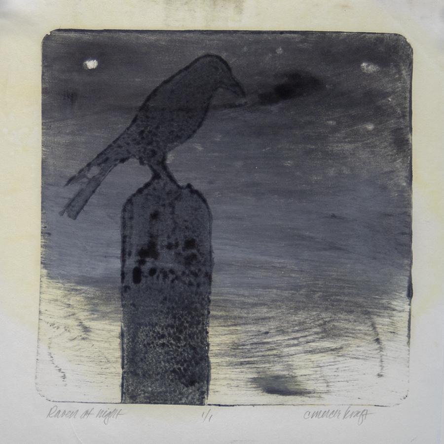 Raven, twilight, moonlight