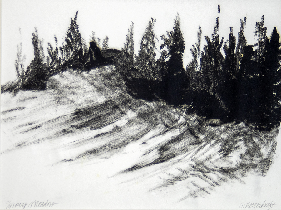 Mountain, snow, conifer, shadows