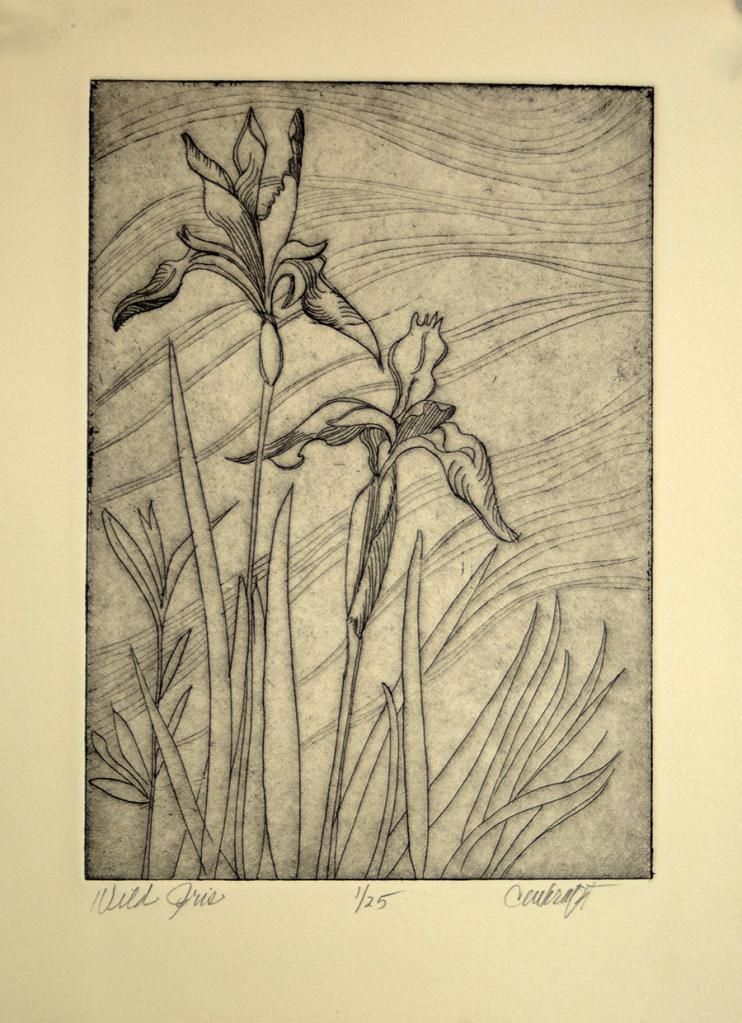 Mountain iris, wildflower, iris