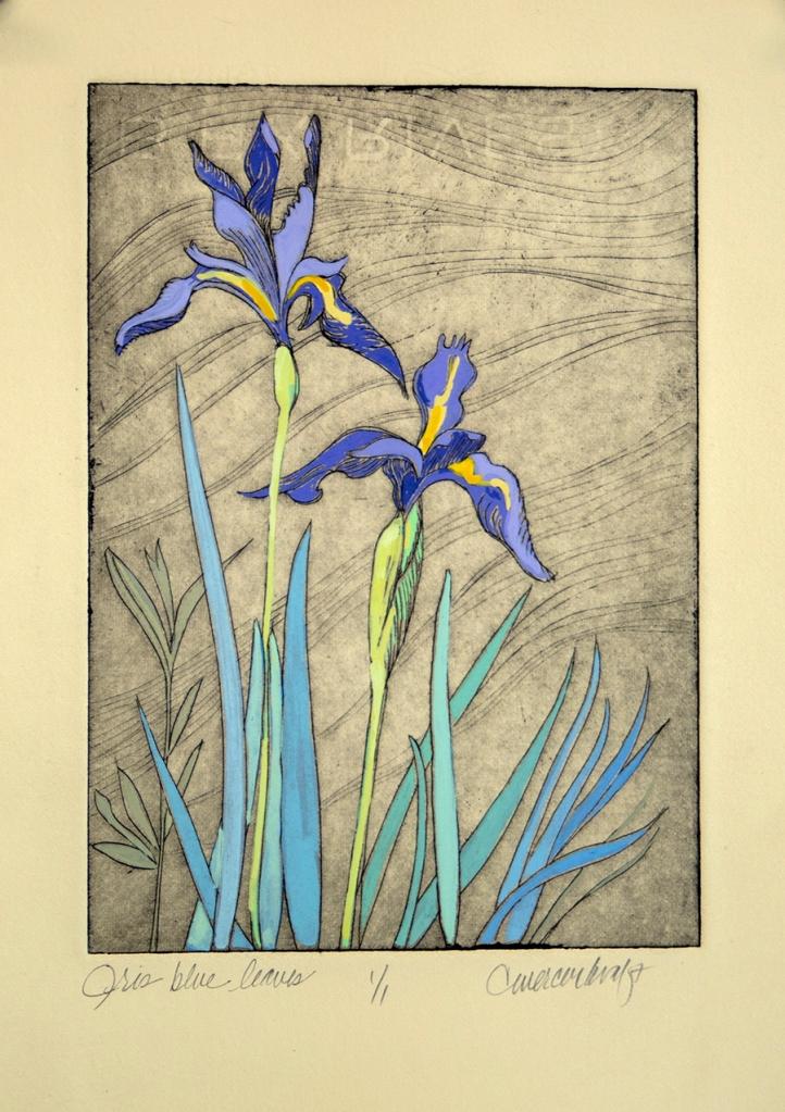 Iris, wildflowers, mountain iris
