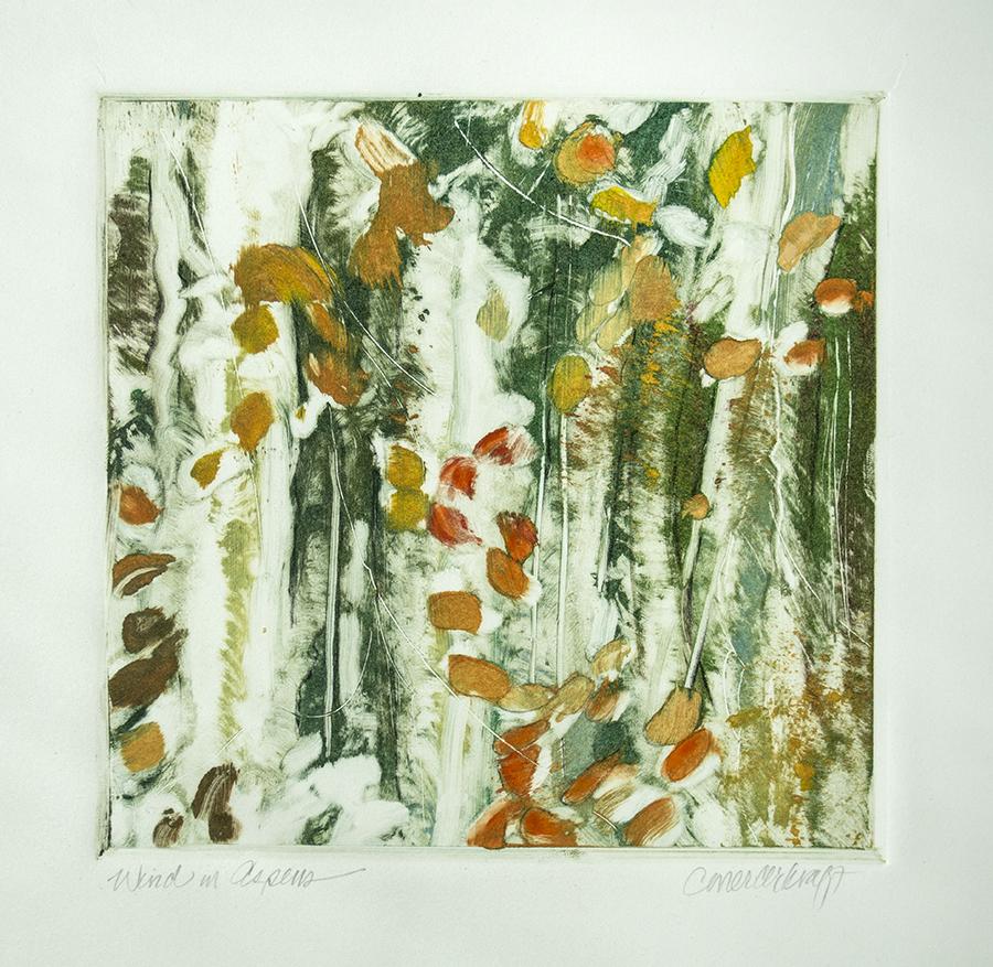 Aspens, fall color